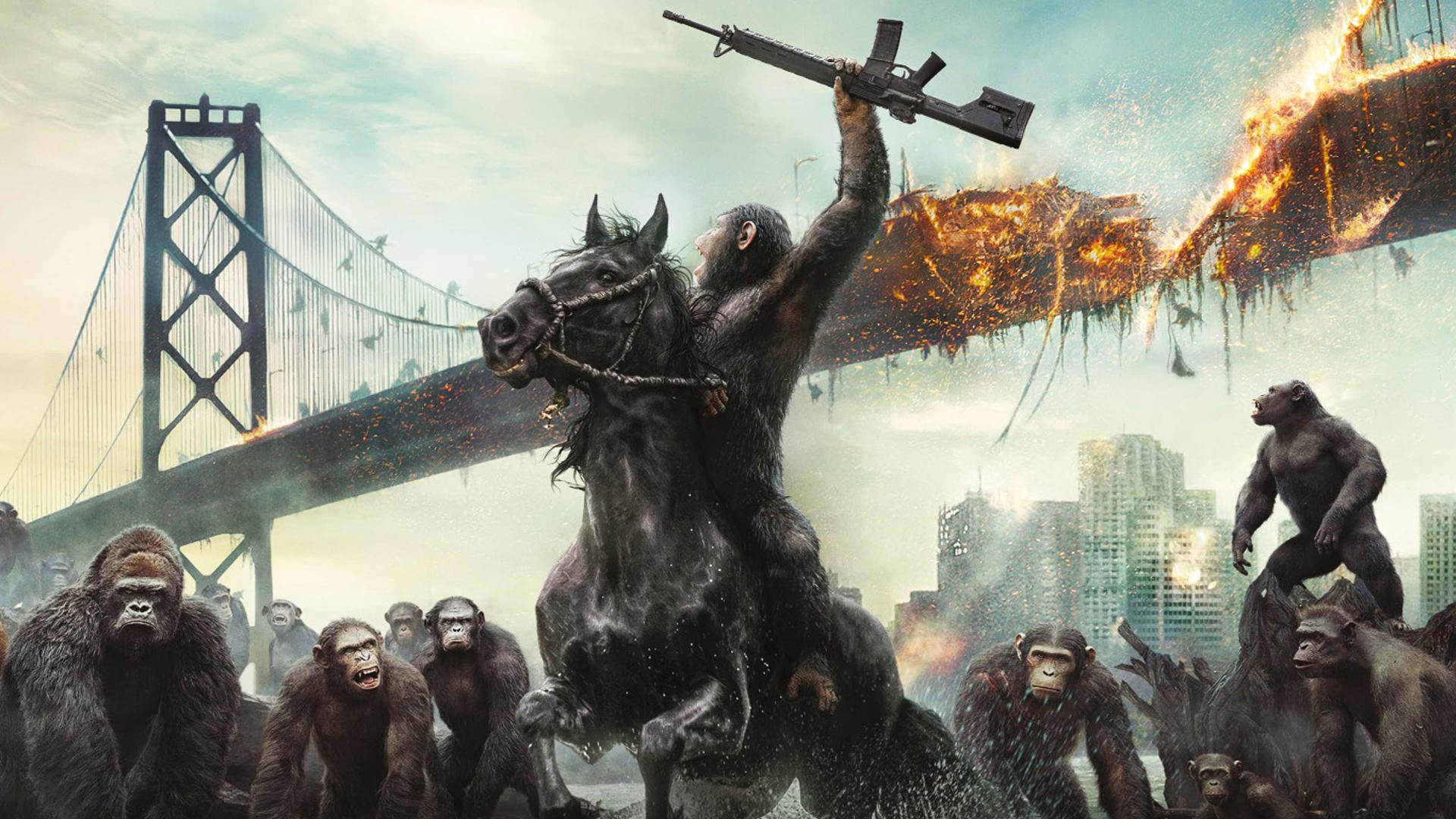 🐒The Great Monkey War Has Begun